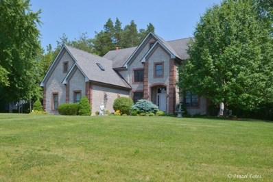 14291 Castlebar Trail, Woodstock, IL 60098 - #: 10324849