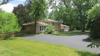 20459 Ela Road, Deer Park, IL 60010 - #: 10325045