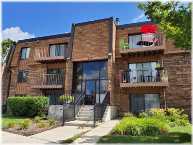 617 Limerick Lane UNIT 1D, Schaumburg, IL 60193 - #: 10325206