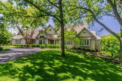 45 S Wynstone Drive, North Barrington, IL 60010 - #: 10325608