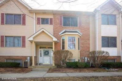 417 E Willow Street, Elburn, IL 60119 - #: 10325836