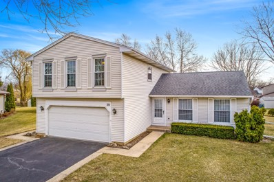 275 Mulford Lane, Roselle, IL 60172 - #: 10325987