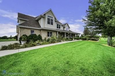 25960 S Greene Castle Drive, Monee, IL 60449 - MLS#: 10326481