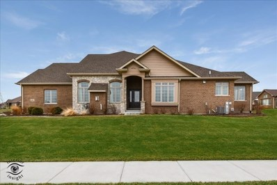 8890 Holland Harbor Circle, Frankfort, IL 60423 - #: 10327349