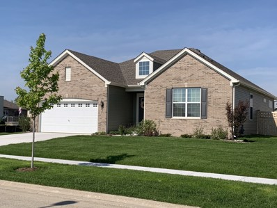 702 Edgewater Drive, Minooka, IL 60447 - #: 10327662