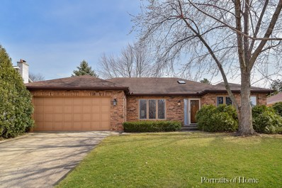 1508 E Bailey Road, Naperville, IL 60565 - #: 10328523
