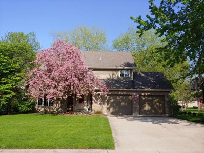 751 Kristin Lane, Wilmington, IL 60481 - #: 10329766
