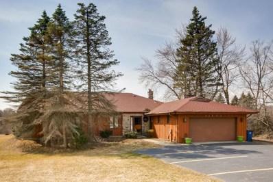 23855 Long Grove Road, Deer Park, IL 60010 - #: 10330964