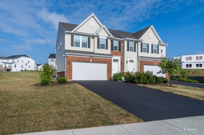 12840 Blue Spruce Drive, Plainfield, IL 60585 - #: 10332550