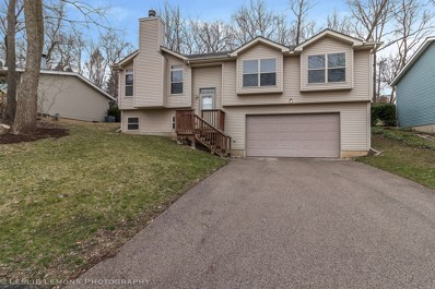 509 Pawnee Drive, Lake In The Hills, IL 60156 - #: 10332981