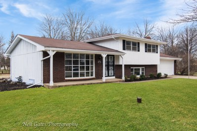 24652 E Pleasant Court, Plainfield, IL 60586 - #: 10333665