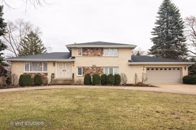 1015 S Chestnut Avenue, Arlington Heights, IL 60005 - #: 10333696