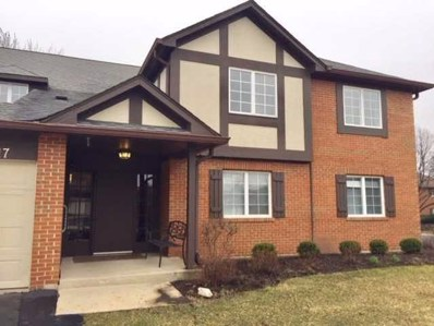 6217 Canterbury Lane UNIT D, Willowbrook, IL 60527 - #: 10333964