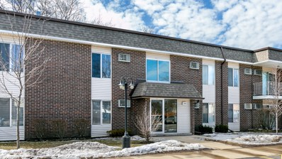 1095 Miller Lane UNIT 203, Buffalo Grove, IL 60089 - #: 10334217