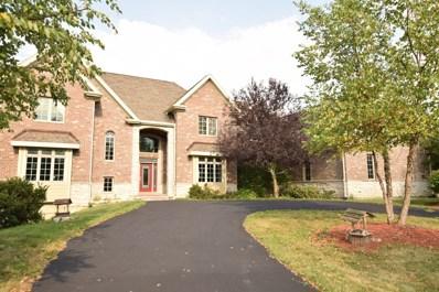 24129 S Center Road, Frankfort, IL 60423 - #: 10334348