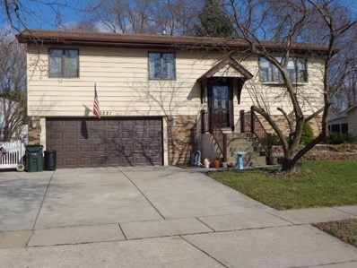 20221 S Holly Lane, Frankfort, IL 60423 - MLS#: 10335039