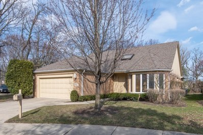 709 Carlyle Court, Northbrook, IL 60062 - #: 10335047