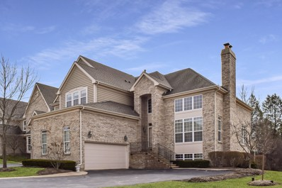 709 Stone Canyon Circle, Inverness, IL 60010 - #: 10335200