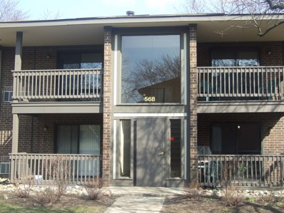 568 Somerset Lane UNIT 7, Crystal Lake, IL 60014 - #: 10335364