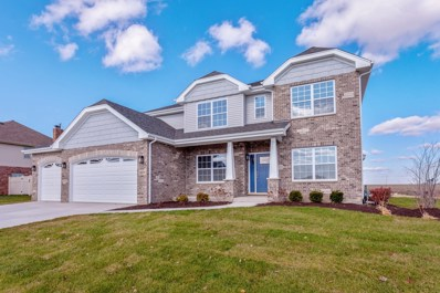 1019 Granite Drive, Manteno, IL 60950 - MLS#: 10335477
