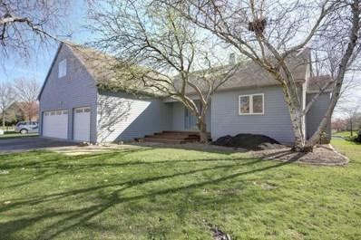 2707 Prairie Meadow Drive, Champaign, IL 61821 - #: 10335611