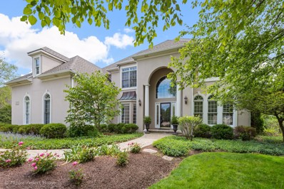 1740 Robert Lane, Naperville, IL 60564 - #: 10335964