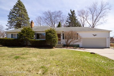 705 Division Street, Woodstock, IL 60098 - #: 10336599