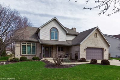 24220 Brown Lane, Plainfield, IL 60586 - #: 10336861