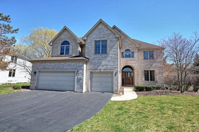 9127 Winding Court, Willow Springs, IL 60480 - #: 10338476