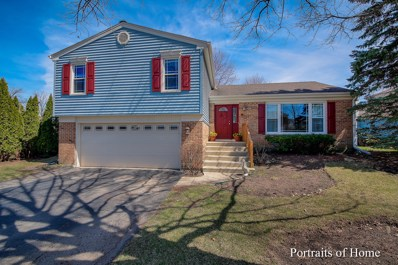 55 W End Road, Roselle, IL 60172 - #: 10339447