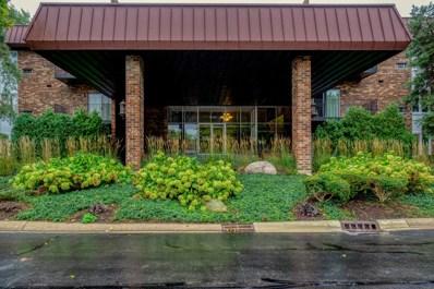 1041 W Ogden Avenue UNIT 132, Naperville, IL 60563 - #: 10339560