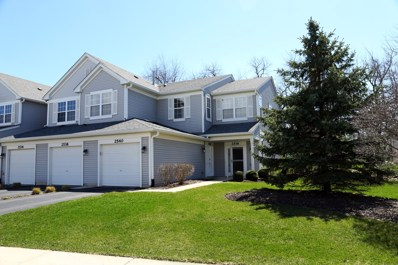 2540 Oneida Lane UNIT 2540, Naperville, IL 60563 - #: 10339877