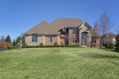 2903 Hanging Fen Court, Johnsburg, IL 60051 - #: 10340128