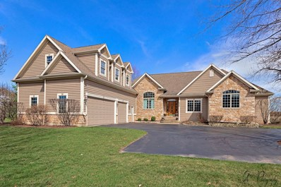 4820 Inmans Way, Ringwood, IL 60072 - #: 10340619