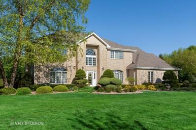 13818 Prairie Hill Drive, Homer Glen, IL 60491 - #: 10340756