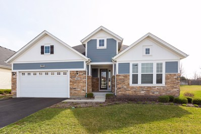 2963 Chevy Chase Lane, Naperville, IL 60564 - #: 10341488