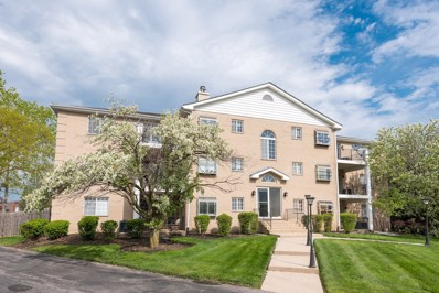1258 Chalet Road UNIT 304, Naperville, IL 60563 - #: 10341492