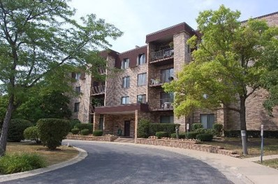 2100 Valencia Drive UNIT 306B, Northbrook, IL 60062 - #: 10341793
