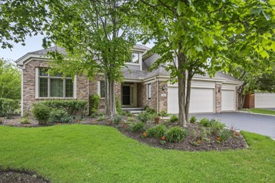 5 Medinah Court, Lake In The Hills, IL 60156 - #: 10341909