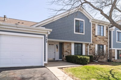 349 Sandalwood Lane UNIT B2, Schaumburg, IL 60193 - #: 10342592