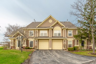 611 Stone Brook Court, Elk Grove Village, IL 60007 - #: 10342922
