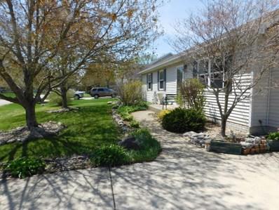 1025 Suzy Street, Lake Holiday, IL 60548 - #: 10343125