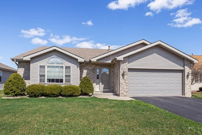 381 Saddle Run Lane, Beecher, IL 60401 - MLS#: 10343204