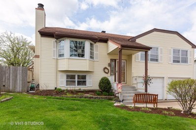 6900 Robey Avenue, Downers Grove, IL 60516 - #: 10343357