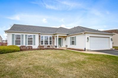 13321 Dakota Fields Drive, Huntley, IL 60142 - #: 10343594