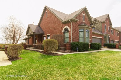 21749 Cappel Lane, Frankfort, IL 60423 - #: 10343669