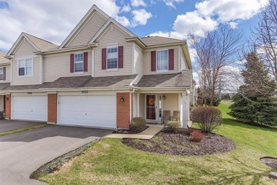 5532 Wildspring Drive, Lake In The Hills, IL 60156 - #: 10344100