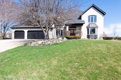 10513 Royal Porthcawl Drive, Naperville, IL 60564 - #: 10344385
