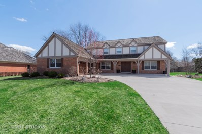 33 Barnswallow Lane, Lake Forest, IL 60045 - #: 10344442