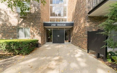 250 Ridge Avenue UNIT 4C, Evanston, IL 60202 - #: 10344690
